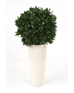 Sweet Bay Single Ball Topiary in White Highland Planter