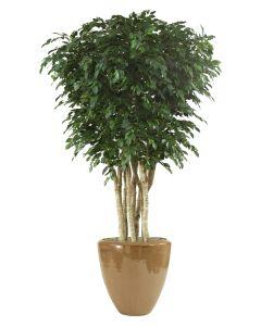10' Ficus Tree in Metallic Mocha Stoneware Planter