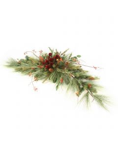 Long Needle Pine with Berries and Plumosum