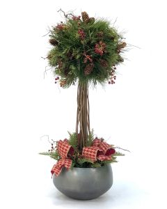 Pine Ball Topiary in Sosa Bowl