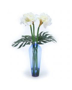 White Amaryllis with Philo Leaf in Blue Vase