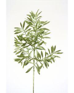 "23"" Emerald Green Glittered Olive Leaf Spray"