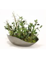 Succulents and Jade Plants in Black Nickel Curved Bowl