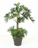 7' Selloum Philodendron With Ground Cover In  Large Gray Terra Cotta Garden Planter