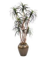 6.5' Dracaena Tree in Metallic Bronze Stoneware Water Jar