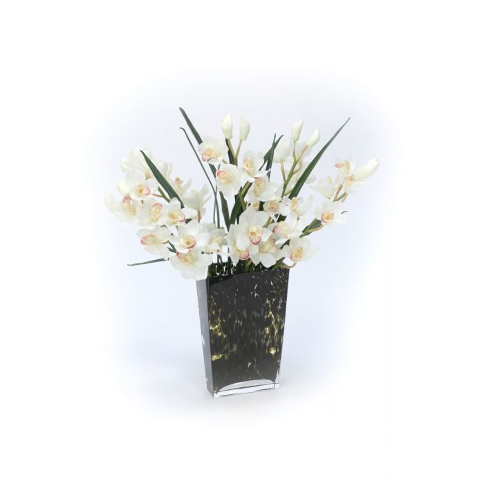 Waterlook White Orchids In Glass Spotted Leopard Vase Distinctive Designs